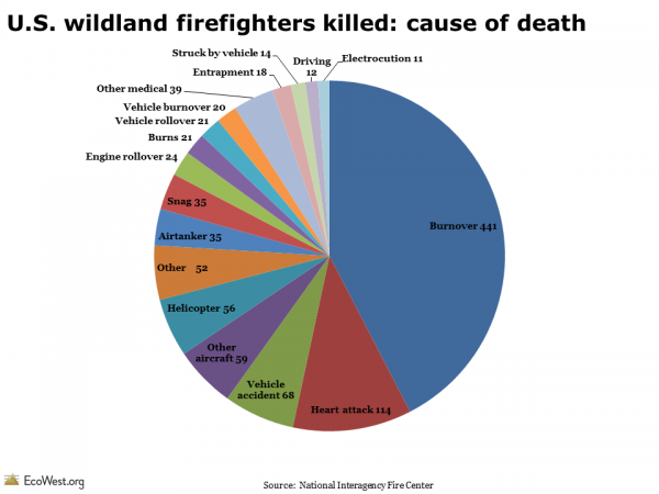 U.S. wildland firefighters killed: cause of death